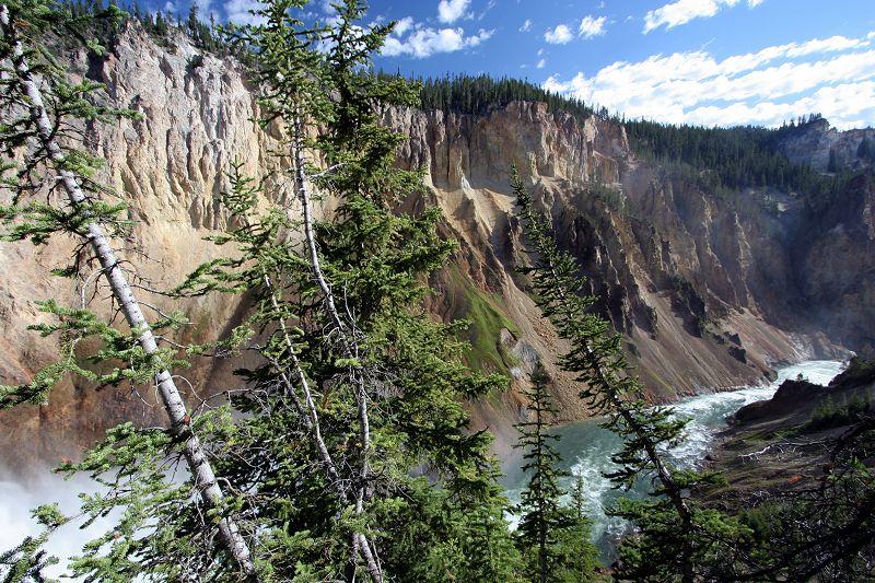 Canyon de Yellowstone